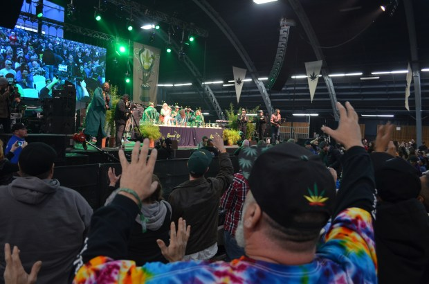 judges throw joints world cannabis cup marijauna california prop 64 crowd party protest marijuana sales