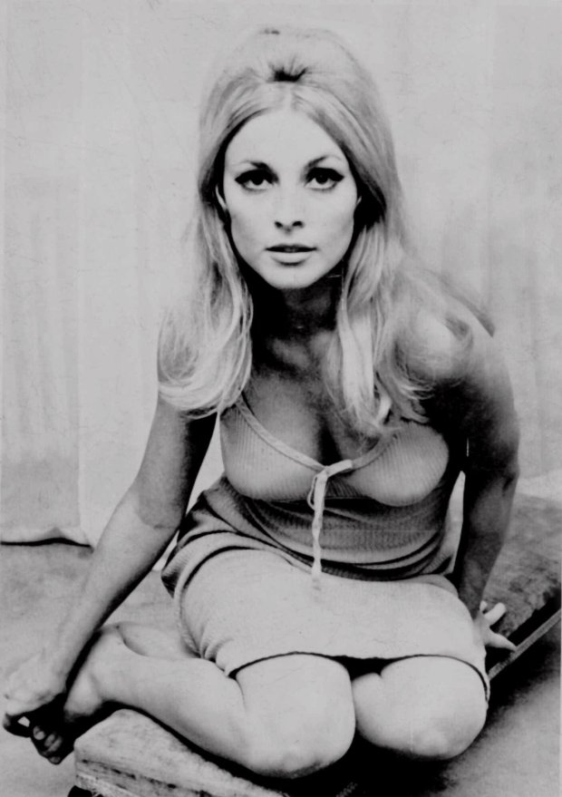 Actress Sharon Tate is shown in this undated file photo. Tate, who starred in television and film roles, was identified by police as one of five victims found slain in her Benedict Canyon estate Aug. 9, 1969 in California. (AP Photo/File)
