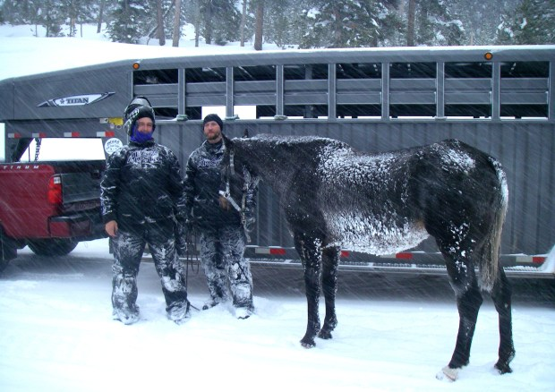 B.J. Hill and his son Heath from Swift Creek Outfitters stand with their horse, Valentine, after rescuing it from a remote area in northwestern Wyoming. (U.S. Forest Service via AP)