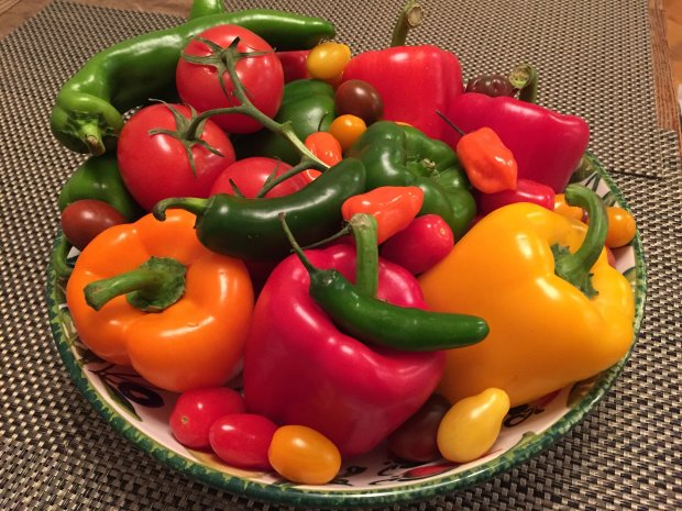 If you love growing tomatoes and peppers, you'll find lots of seedlingsavailable at any of the area Master Gardeners' annual spring plant sales. (Courtesy of Pam Roper)