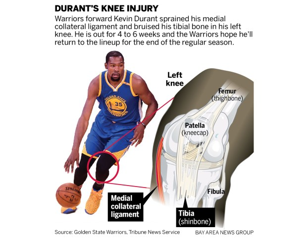 DURANT knee 03217