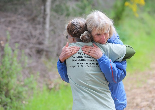 "Photograph by George SakkestadMarianne Duvernay sheds tears of happiness as she gets a hug from Betty Deluco after releasing ""Gato"" the bobcat back into the wilderness at Sanborn Park in Saratoga."