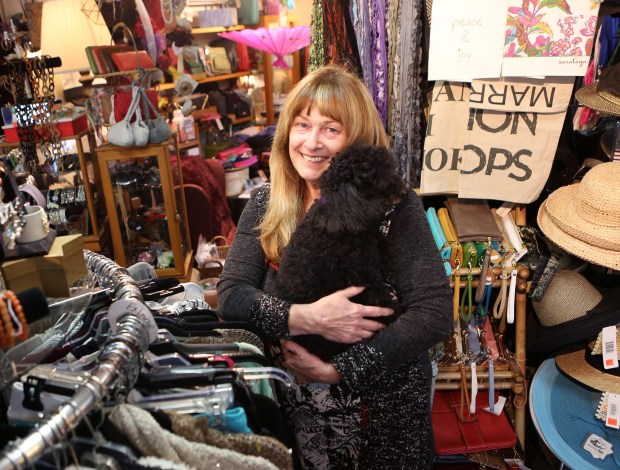 Photograph by George SakkestadMaryAnn Serpa, owner of Skin Prophecy Boutique, holds her poodle Teddy in her Saratoga Village store. Serpa was honored as Saratoga's businessperson of the year at the State of the City address on April 15.