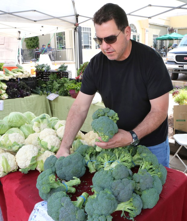 Photograph by George SakkestadMike Thomas shops for broccoli while attending the Saratoga Village Wednesday Farmer's Market.
