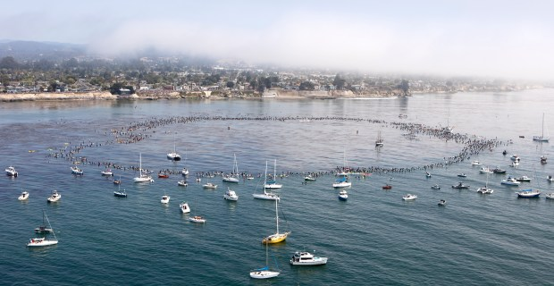 Thousands gathered at Pleasure Point, both in the water and on the cliffs, to remember surfing legend Jack O'Neill on Sunday, July 9, 2017, in Santa Cruz, Calif. (Photo courtesy of William Scherer)