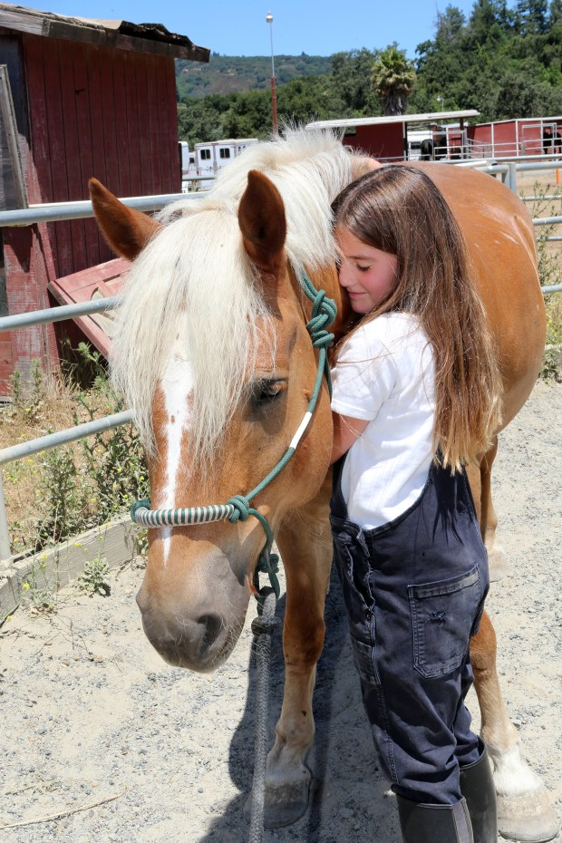 Photograph by George Sakkestad. Eight-year-old Evelyn Williams cuddles with Gus, which is apparently one of her favorite things to do at Bear Creek Stables. 'I really like petting the horses and riding them on the trail,' she said.