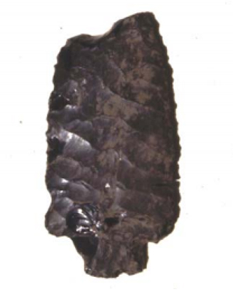 At a Native American site where the expansion of a Santa Clara Valley Water District reservoir is planned, Pete Andreson found this large obsidian tool. An archeological analysis by Mark Hylkema later revealed that the projectile point originated from the distant Casa Diablo region of the eastern side of the Sierra, noted for its obsidian mining and manufacturing. (Photo courtesy of Mark Hylkema)
