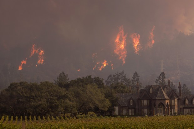 Flames rise behind Ledson Winery on October 14, 2017 in Kenwood, near Santa Rosa, California. (Photo by David McNew/Getty Images)