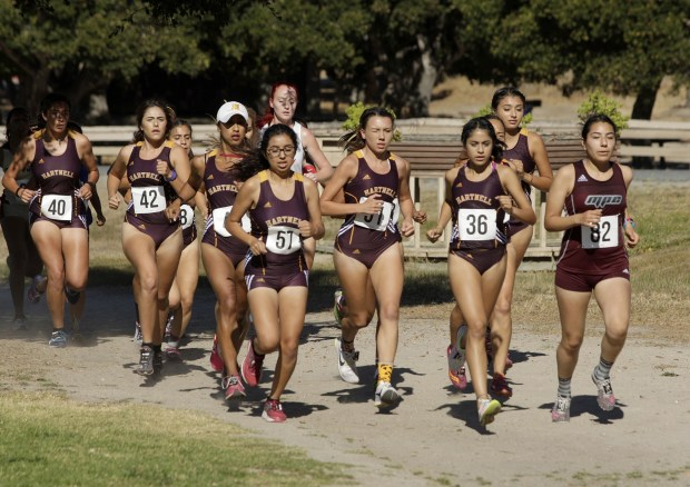A pack of Hartnell College runners during Coast Conference Cross Country Finals race at Toro Park on Friday, Oct. 27, 2017. (Vern Fisher - Monterey Herald)