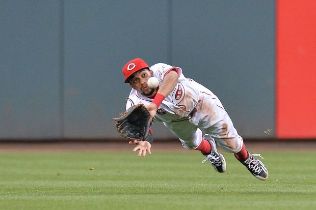 CINCINNATI, OH - JUNE 8: Billy Hamilton #6 of the Cincinnati Reds makes a diving catch of a line drive from Matt Adams #32 of the St. Louis Cardinals in the fifth inning at Great American Ball Park on June 8, 2016 in Cincinnati, Ohio. St. Louis defeated Cincinnati 12-7. (Photo by Jamie Sabau/Getty Images)