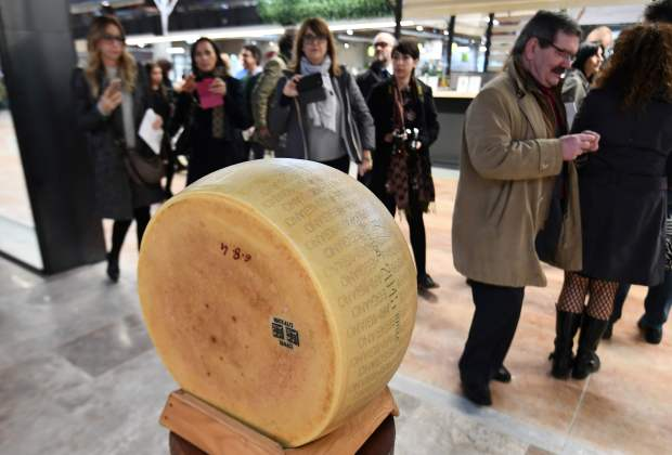 A loaf of parmesan cheese on display during a press tour at FICO Eataly World.(Vincenzo Pinto, AFP Getty)