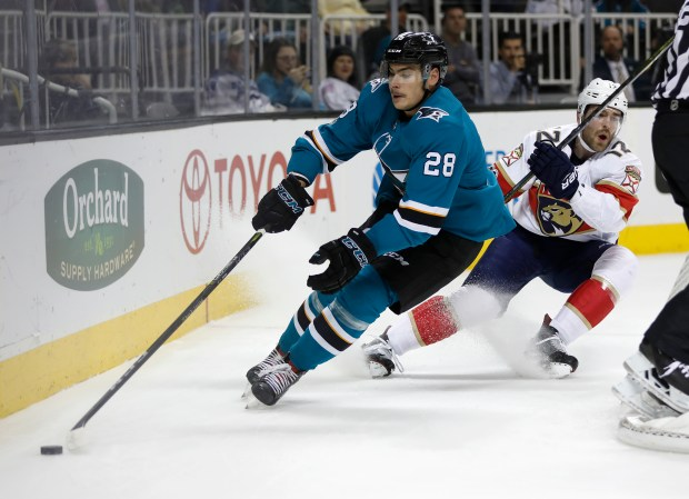 San Jose Sharks' Timo Meier (28) controls the puck against Florida Panthers' Ian McCoshen (12) in the first period at the SAP Center in San Jose, Calif. on Thursday, Nov. 16, 2017. (Nhat V. Meyer/Bay Area News Group)