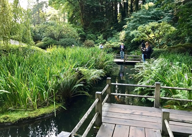 Serenity abounds at the Portland Japanese Garden in Washington Park, wherea zigzag bridge offers views -- and photo ops -- of koi swimming below. (Jackie Burrell/Bay Area News Group)