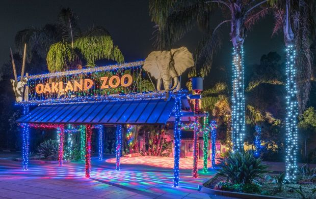 Holiday lights greet visitors at the entrance to the Oakland Zoo (Oakland Zoo)