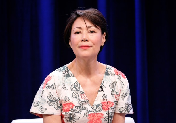 BEVERLY HILLS, CA - JULY 30: Executive producer/reporter Ann Curry of 'We'll Meet Again' speaks onstage during the PBS portion of the 2017 Summer Television Critics Association Press Tour at The Beverly Hilton Hotel on July 30, 2017 in Beverly Hills, California. (Photo by Frederick M. Brown/Getty Images)