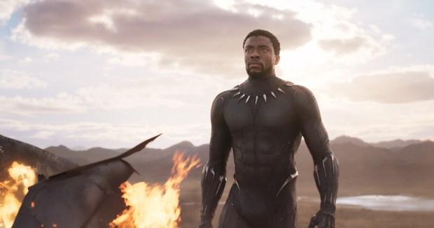 T'Challa/Black Panther (Chadwick Boseman) in 'Black Panther.' (Marvel Studios)
