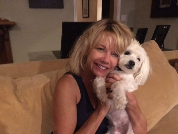 A pet detective and volunteers are searching for a maltese, Happy, that ranaway her mother, Kim Takeuchi, along with two other dogs was attacked by a transient last week in the Bel Gatos hills area of Los Altos. (Courtesy of Kim Takeuchi)