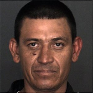 Lucio Cota Lopez, 34, of Fontana, was arrested Tuesday on suspicion ofplacing a kitten in a freezer, squeezing the animal and throwing it off a second-story balcony, police said. The kitten suffered a collapsed lung and a fractured hind leg. (Courtesy of the Fontana Police Department)