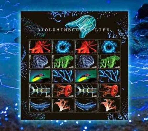 The U.S. Postal Service issued its Bioluminescent Life stamps series Thursday. (Courtesy U.S. Postal Service)