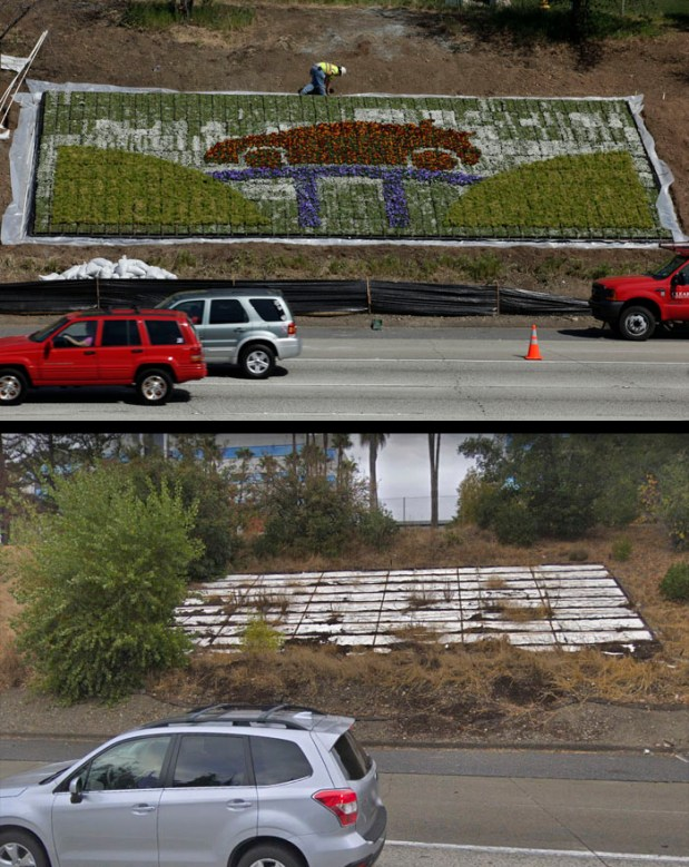 Workers continued to landscape an area along Northbound Interstate 280, just below the Winchester Blvd. overpass, in San Jose on Monday, March 22, 2010. The Caltrans pilot project is being paid for by Toyota. A permanent freeway sign advertises the car company, plus the flowers here are arranged in the pattern of a Toyota Prius. (Karen T. Borchers/Mercury News)