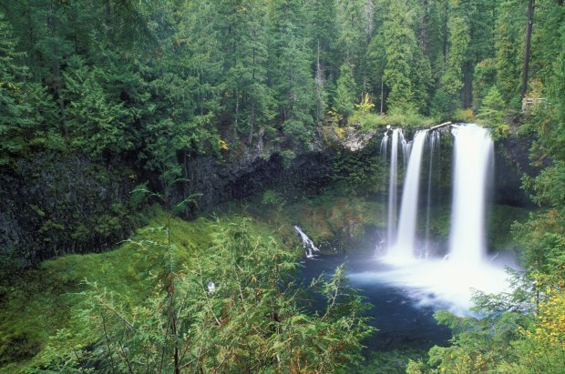 Hike to Koosah Falls, one of two spectacular and easy-to-reach waterfallson the wild and scenic McKenzie River near Sisters, Oregon. (Purestock)