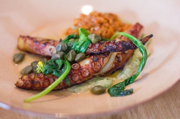 Grilled octopus with Santorini favas and Aegean capers is one of the smallplates at Taverna, a new Greek restaurant in Palo Alto. (Courtesy of Taverna)
