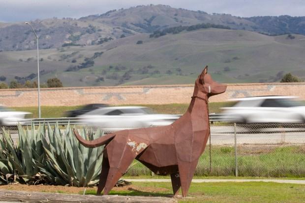 Photos: Santa Clara County opens new Animal Services Center in San Martin 15