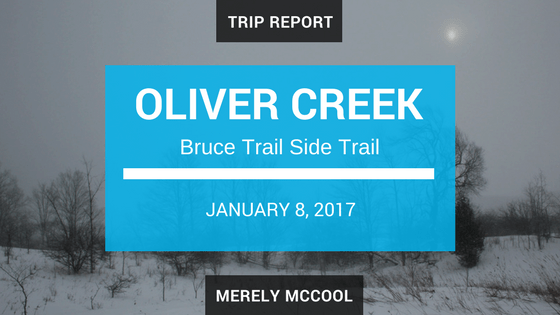 Trip Report: Hiking the Bruce Trail side trail, Oliver Creek.