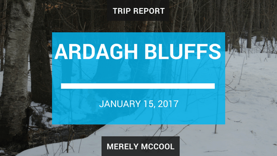 Trip Report: Hiking at Ardagh Bluffs, in Barrie.