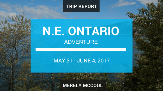 North East Ontario Adventure