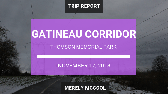 Gatineau Corridor, Pan Am Path, Great Trail from Thomson Memorial Park trip report - Merely McCool