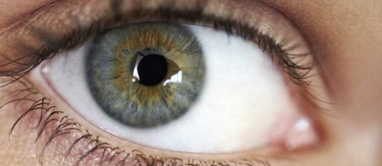 Patterns of abnormal visual attention in myalgic encephalomyelitis