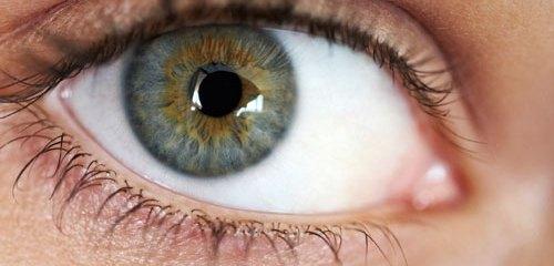 Characterising eye movement dysfunction in myalgic encephalomyelitis/chronic fatigue syndrome