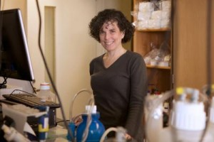 Mady Hornig, M.D., lead author and director of translational research at the Center for Infection and Immunity at Columbia University's Mailman School of Public Health