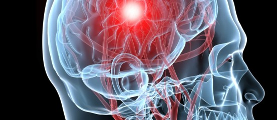 brain-and-nerves 553x240