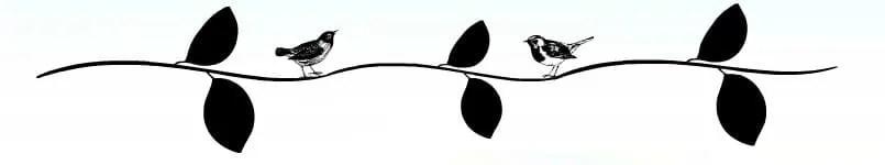 rp_leaves3.jpg