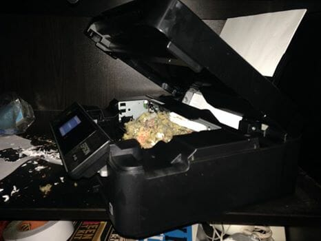 yes, this a NEST, inside the PRINTER