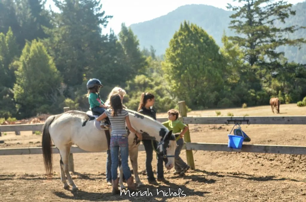 meriah nichols horse therapy september 2014 (18 of 28)