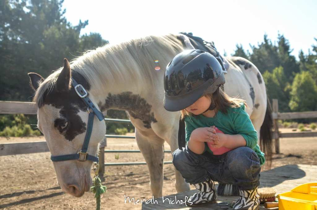meriah nichols horse therapy september 2014 (25 of 28)