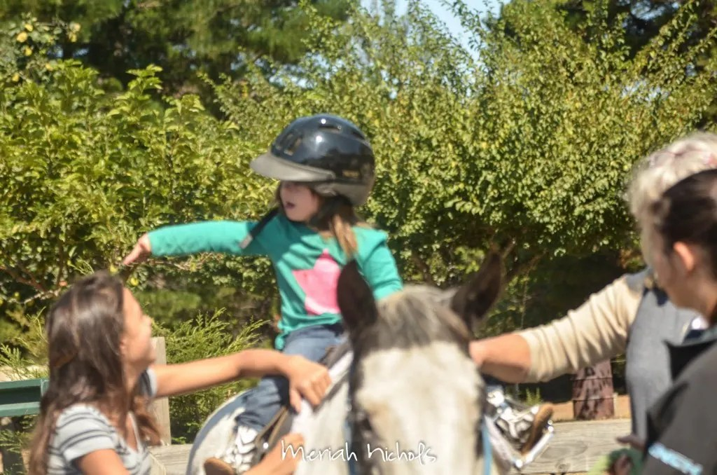 meriah nichols horse therapy september 2014 (7 of 28)