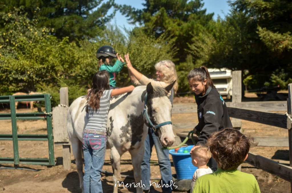 meriah nichols horse therapy september 2014 (8 of 28)