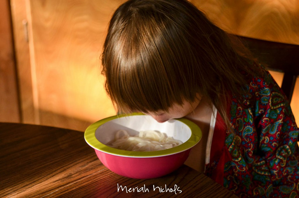 meriah nichols pho recipe september 2014 (17 of 20)