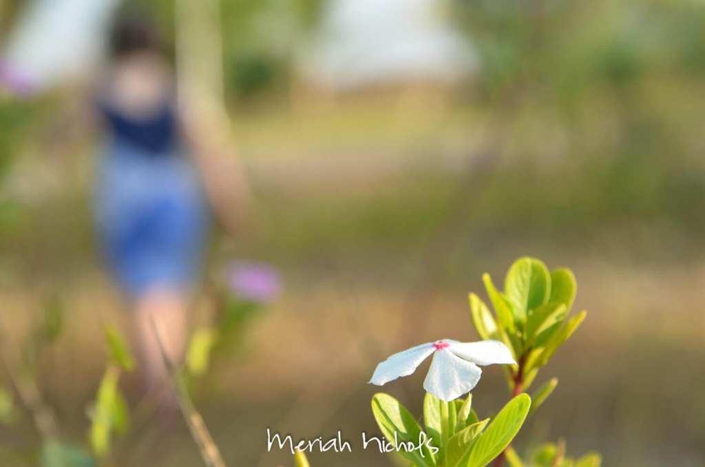meriah nichols rv parks mexico-38
