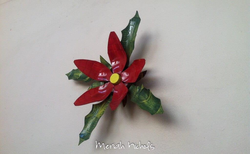 meriah nichols mexico-27