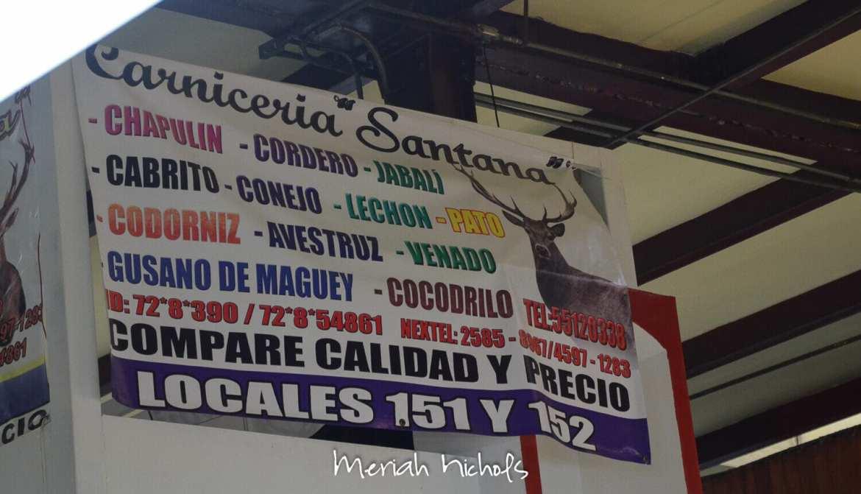 meriah nichols mexico-32