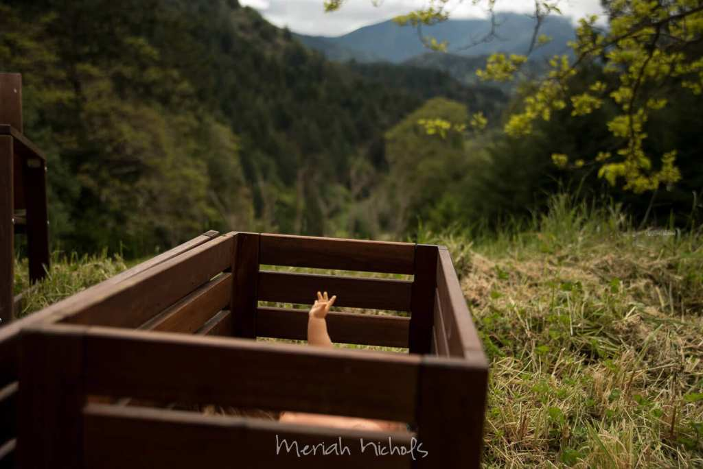 a doll's hand and arm stick out of a wooden box. the mountains are visible in the background