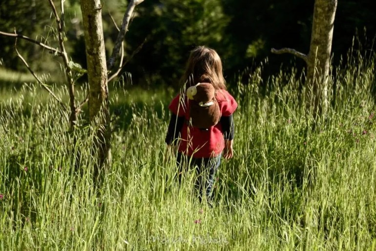 child walking through grass, back to camera