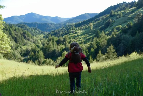 child walking in meadow with back to camera