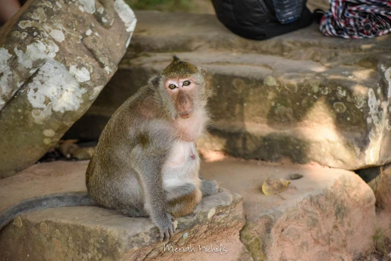 Bayan at Angkor Wat by Meriah Nichols-38