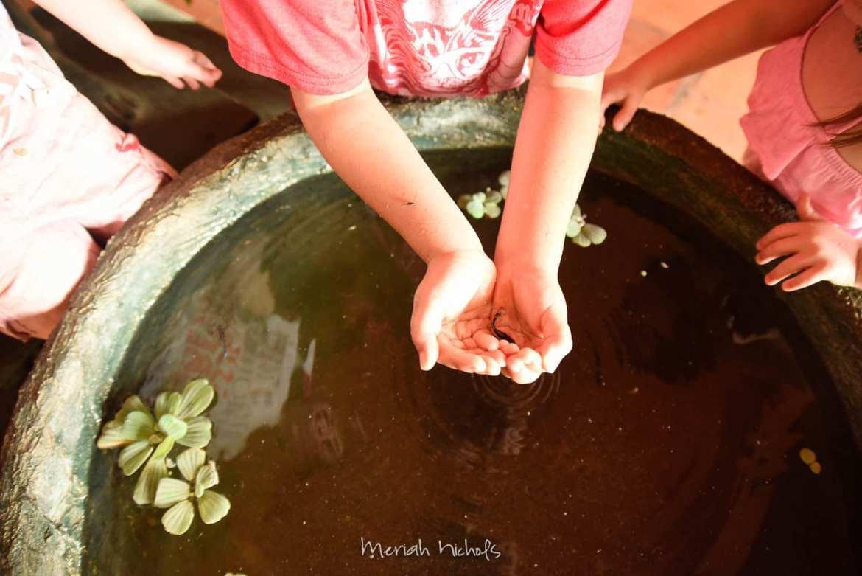 Meriah Nichols Ta Prohm Angkor Wat -46